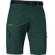 Schöffel Silvaplana2 Shorts Men green